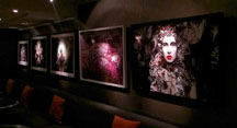 Quagliano's Kirsty Mitchell photography