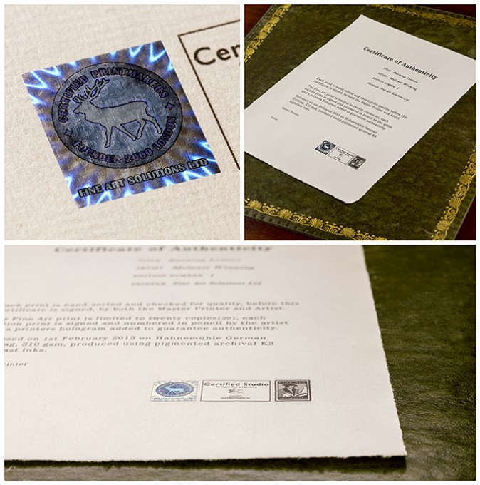 A selection of views of an example Certificate of Authenticity, featuring our tamper proof holograms